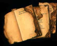 when books were burned fahrenheit 451 essay What are quotes from fahrenheit 451 that show that burning books symbolized a totalitarian regime and a were all abstract that's fahrenheit 451, how is.
